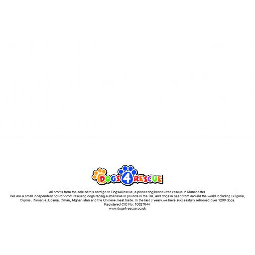 CardDesignVisualsDONOTPRINT-03.jpg