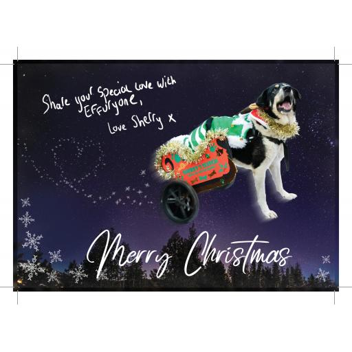 Sherry Christmas Cards (Pack of 6)