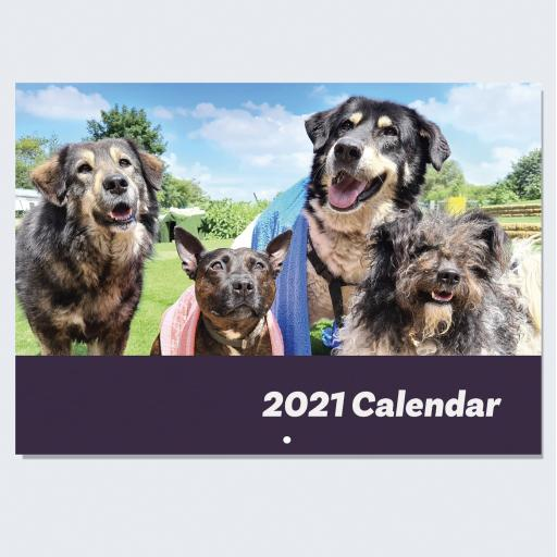 Dogs4Rescue Wall Calendar