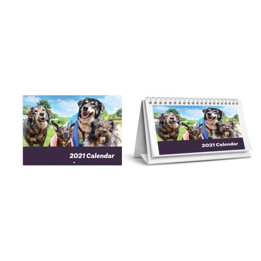 Dogs4Rescue Wall and Desk Calendar Combo