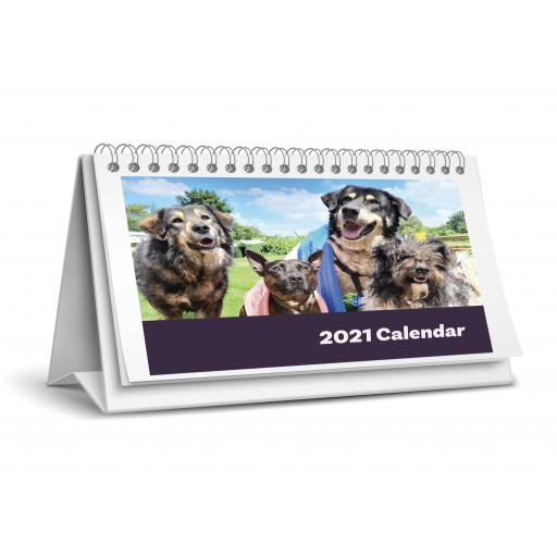 Dogs4Rescue Desk Calendar